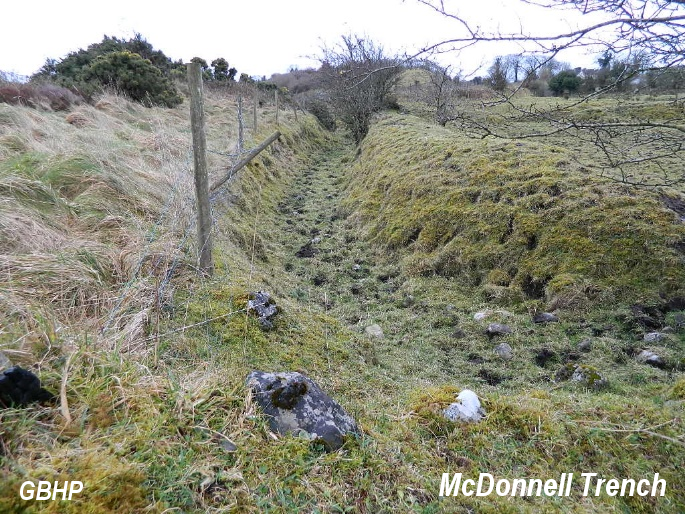 McDonnell Trench, Esker