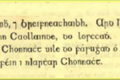 Reference to Boyounagh in  the Annals of Four Masters_as Gaeilge