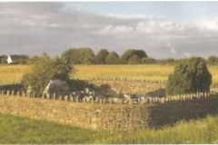 Ballinastack Children's Burial Ground