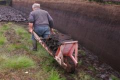 Spreading turf using a wheelbarrow