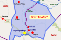 Gortaganny Townland