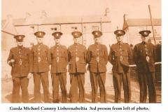 Garda Michael Canney, Lisheenaheltia