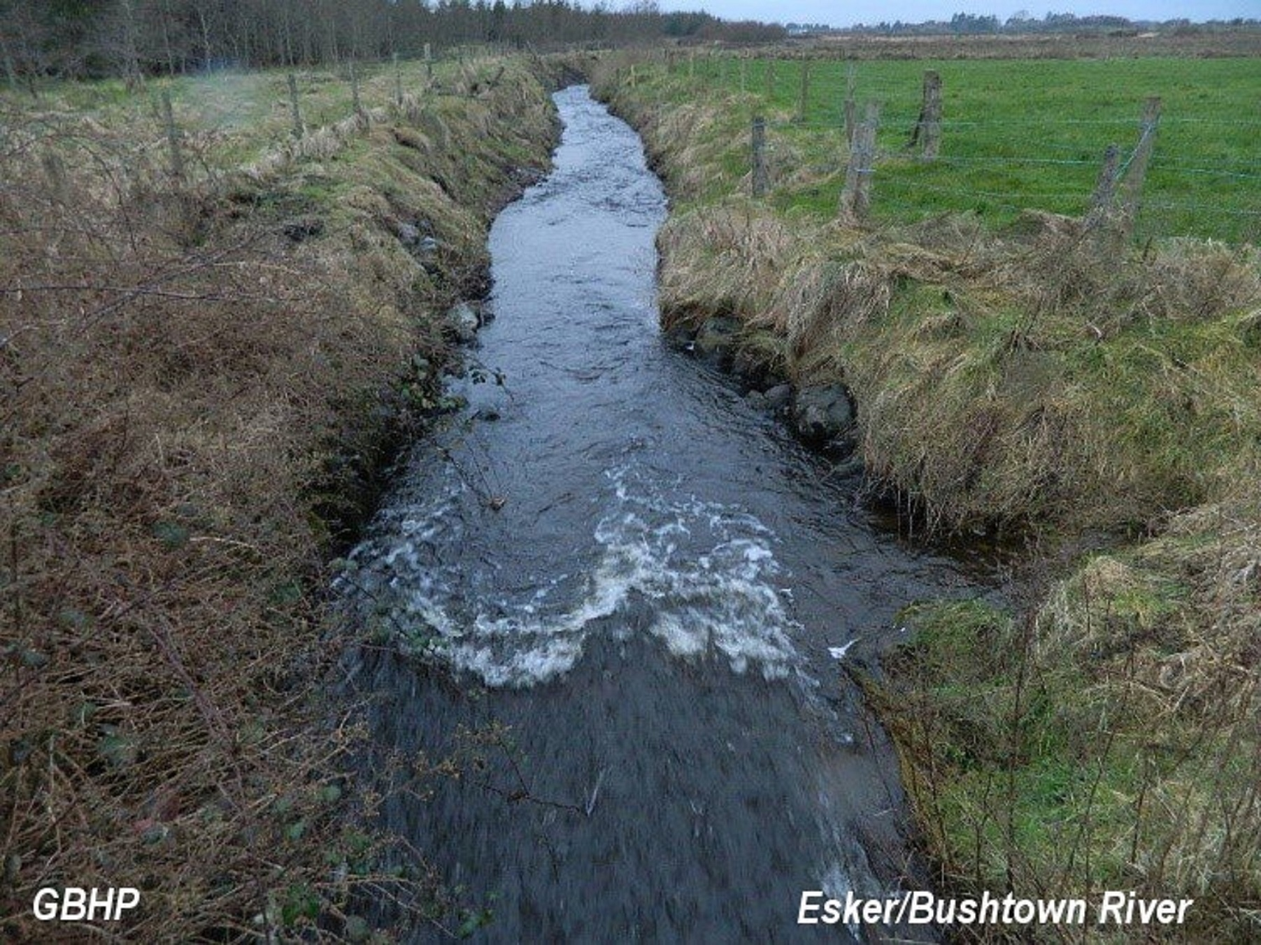 Esker/Bushtown River