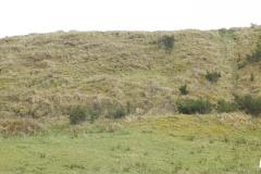 Esker Hill